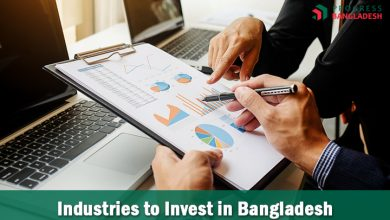 Photo of Which Industries to Choose to Invest in Bangladesh?