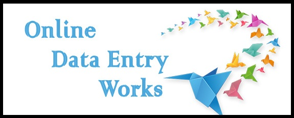 earn from data entry